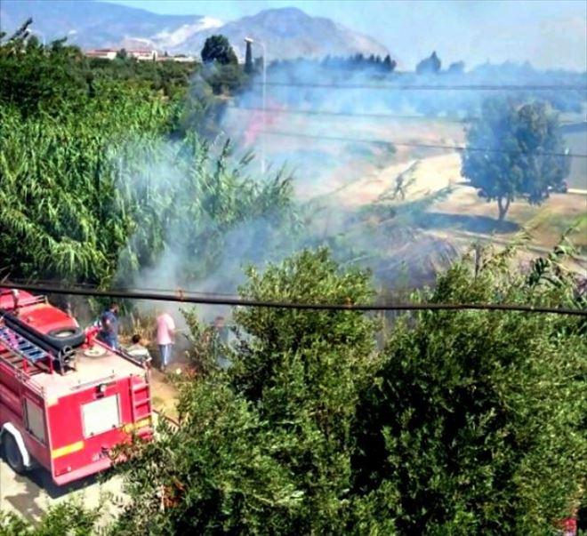 Söke'de Sazlık Alanda Çıkan Yangın Korkuttu
