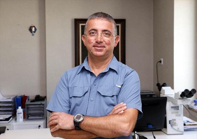 Lenfoma Kanseri En Çok Tarım İşçilerini Vuruyor