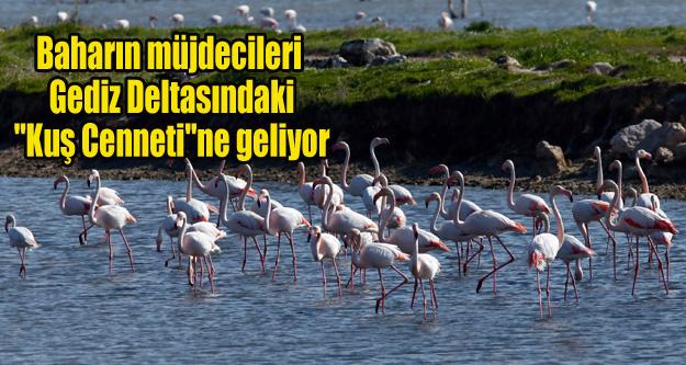Baharın müjdecileri 'Kuş Cenneti'ne geliyor