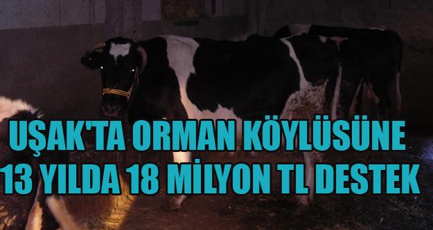 UŞAK'TA ORMAN KÖYLÜSÜNE 13 YILDA 18 MİLYON TL DESTEK