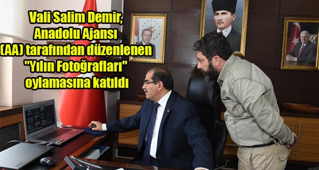 Vali Salim Demir, (AA) tarafından düzenlenen quot;Yılın Fotoğraflarıquot; oylamasına katıldı