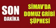 SİMAV#039;DA DOMUZ GRİBİ ŞÜPHESİ