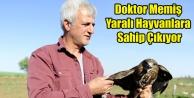 DOKTOR YARALI HAYVANLARA SAHİP ÇIKIYOR