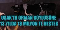 UŞAK#039;TA ORMAN KÖYLÜSÜNE 13 YILDA 18 MİLYON TL DESTEK