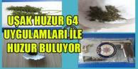 UŞAK#039;TA HUZUR 64 UYGULAMALARINDA 43 KİŞİ TUTUKLANDI