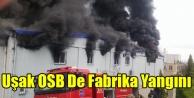 UŞAK OSB#039;DE FABRİKA YANGINI