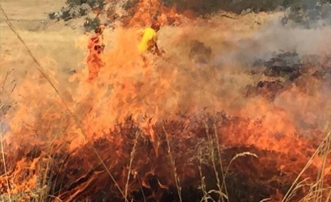 Hasan Dağındaki Ormanlık Alanda Yangın Çıktı