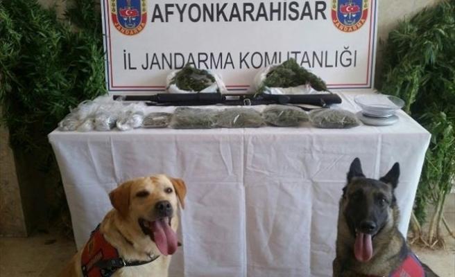 Afyonkarahisar'da Jandarmadan Uyuşturucu Baskını