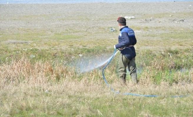Tuşba Belediyesi'nden Sivrisinek Ve Haşereyle Mücadele Çalışması