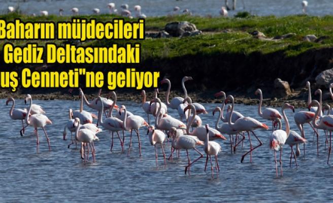 """Baharın müjdecileri """"Kuş Cenneti""""ne geliyor"""