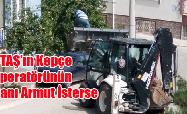 UTAŞ'IN KEPÇE OPERATÖRÜNÜN CANI ARMUT İSTERSE!
