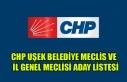 CHP UŞAK BELEDİYE MECLİSİ VE İL GENEL MECLİSİ...