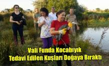 Vali Funda Kocabıyık tedavi edilen kuşları doğaya bıraktı