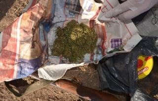 Aliağa'da Uyuşturucu Operasyonu