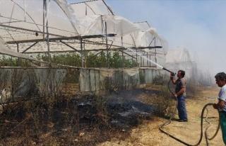 Manavgat'ta Yangın