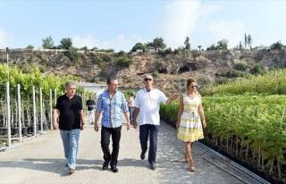 Muratpaşa Belediyesi Bitki Üretim Tesislerini 5...