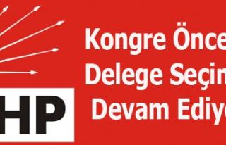 CHP'de kongre öncesi delege seçimleri devam ediyor..