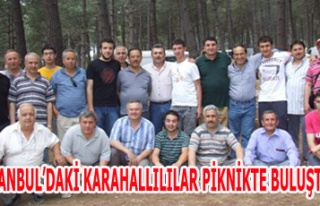 İSTANBUL'DAKİ KARAHALLILILAR PİKNİKTE BULUŞTULAR