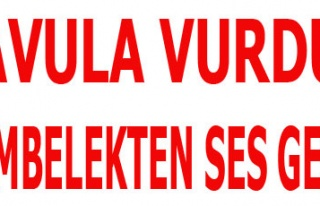 DAVULA VURDUK DÜMBELEKTEN SES GELDİ!