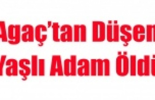 AGAÇ'TAN DÜŞEN YAŞLI ADAM ÖLDÜ