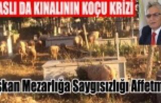 BAŞKAN MEZARLIĞA SAYGISIZLIĞI AFFETMEDİ KOÇ REHİN...