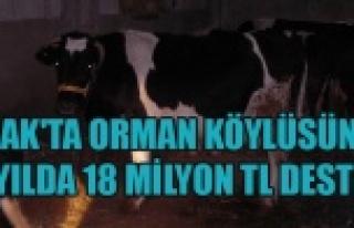 UŞAK'TA ORMAN KÖYLÜSÜNE 13 YILDA 18 MİLYON...