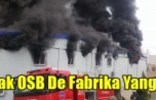 UŞAK OSB'DE FABRİKA YANGINI