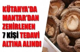 KÜTAHYA'DA MANTAR'DAN ZEHİRLENEN 7 KİŞİ...