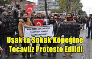 Uşak'ta, Sokak Hayvanlarına Şiddet Protesto...