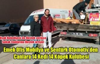 EMEK OFİS MOBİLYA VE ŞENTÜRK OPTOMOTİV'DEN SOKAK CANLARINA BÜYÜK DESTEK