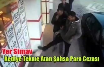 Simav'da Kediye Tekme atan Kişiye Para Cezası