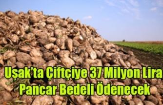 Uşak'ta Çiftçiye 37 Milyon Lira Pancar Bedeli Ödenecek.