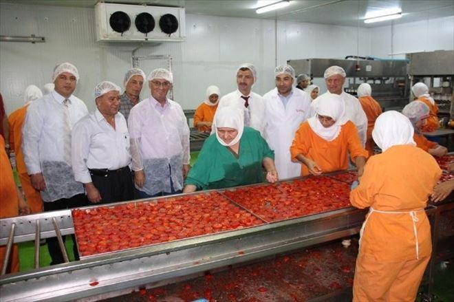 Vali Bektaş Gıda Üretim İşletmelerinde İncelemelerde Bulundu