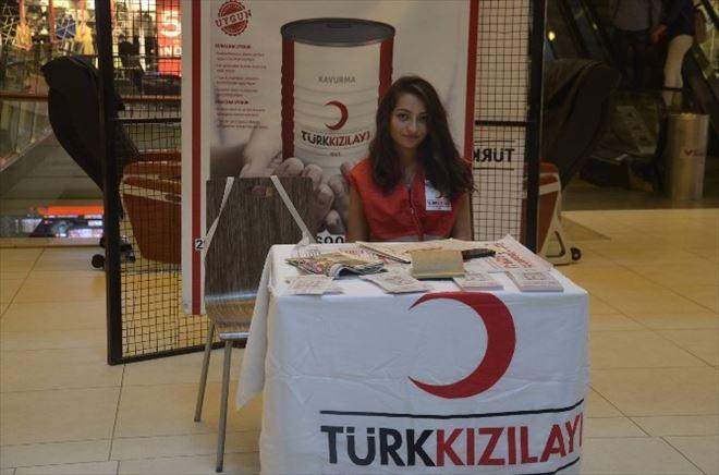 Türk Kızılayın'dan Kurban Standı