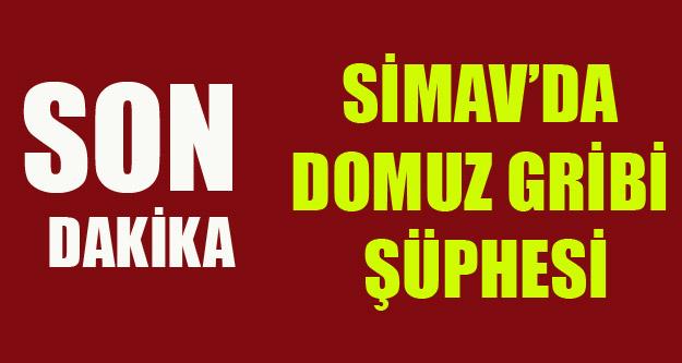 SİMAV'DA DOMUZ GRİBİ ŞÜPHESİ
