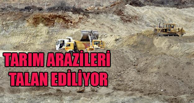 TARIM ARAZİLERİ TALAN EDİLİYOR, KİMSEDEN DUR YOK!