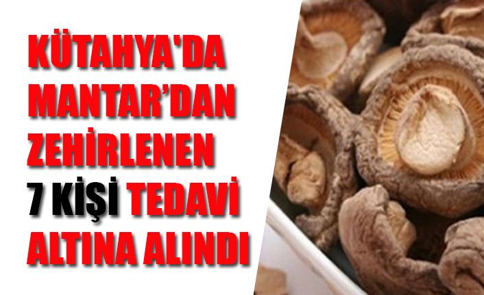 KÜTAHYA'DA MANTAR'DAN ZEHİRLENEN 7 KİŞİ TEDAVİ ALTINA ALINDI