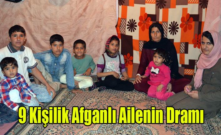 Afganlı Mohammadi Ailesinin Yürek Yakan Yaşam Mücadelesi