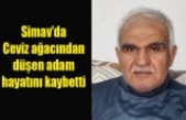 Simav'da Ceviz ağacından düşen adam hayatını kaybetti