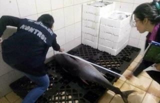 Limit Altı Balık Satışına Ceza