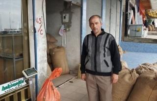 Alaplı'da Fındık Üreticileri Dertli