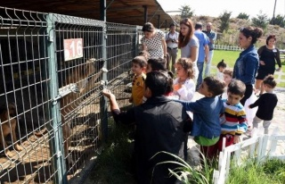 Miniklerden Hayvan Bakımevine Ziyaret