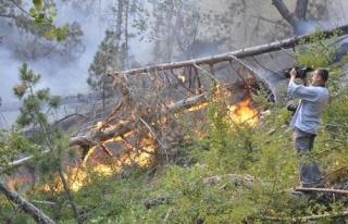 Banaz`da ki Orman Yangını Büyüyor