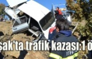Uşak'ta Trafik Kazası:1 Ölü