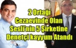 SESLİ'NİN 5 ŞİRKETİNE İFLAS ERTELEME VE...