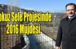 Dokuzsele Projesi'nde 2016 Müjdesi