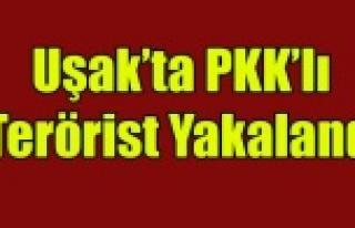 UŞAK'TA PKK'LI TERÖRİST YAKALANDI