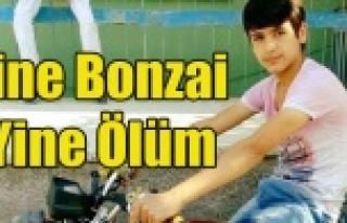 Uşak'ta 15 yaşındaki Çocuk Bonzai'den...