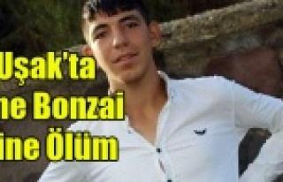UŞAK'TA BONZAİ'DEN 1 GENÇ DAHA YAŞAMINI...
