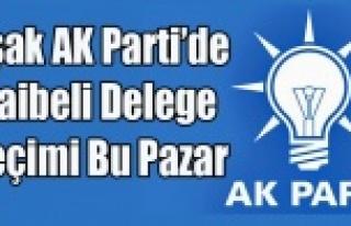 UŞAK AK PARTİ'DE ŞAİBELİ DELEGE SEÇİMİ...